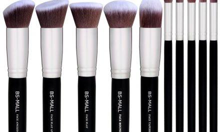 Top 10 Best Makeup Brush Set of 2021