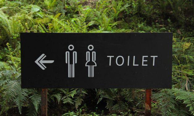 Top 10 Toiletten, die man 2017 kaufen sollte