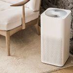 Top 10 Best Air Purifiers of [y]