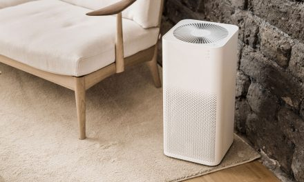 Top 10 Best Air Purifiers of 2021