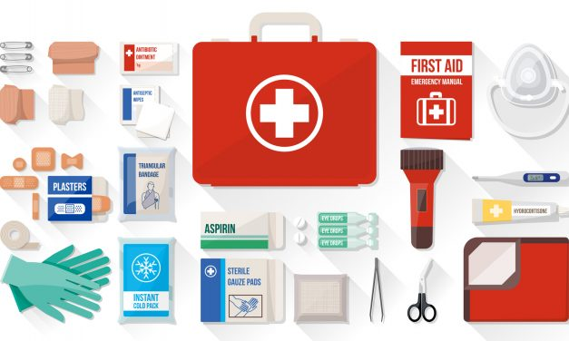 Top 10 Best First Aid Kits of 2020