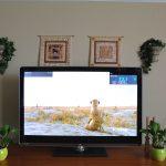 Top 10 Best Indoor/Outdoor HDTV Antennas of [y]