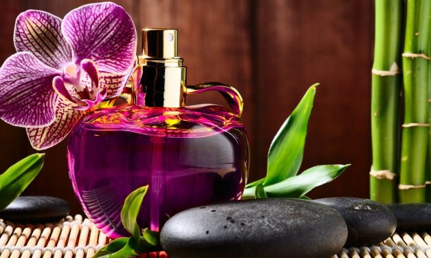 Top 10 Best Great Smelling Colognes for Women of 2019