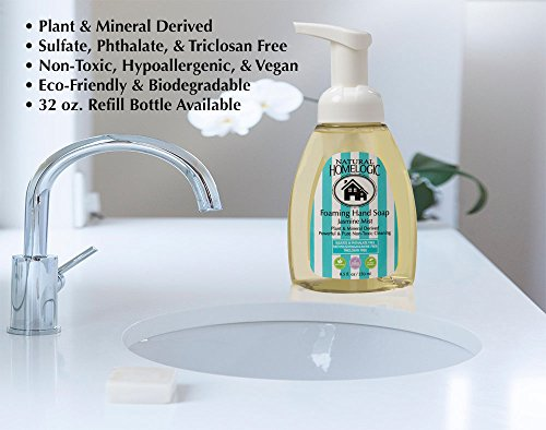 6-natural-homelogic-eco-friendly-hand-soap